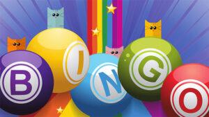 Come funziona il bingo online